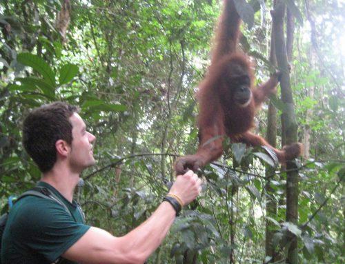 Reizen Persoonlijke Ontwikkeling: Buiten Mijn Comfortzone in Sumatra (Deel 3)