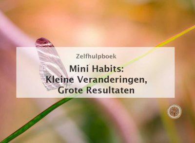 mini habits smaller habits bigger results kleine veranderingen grote resultaten stephen guise 1 minuut community