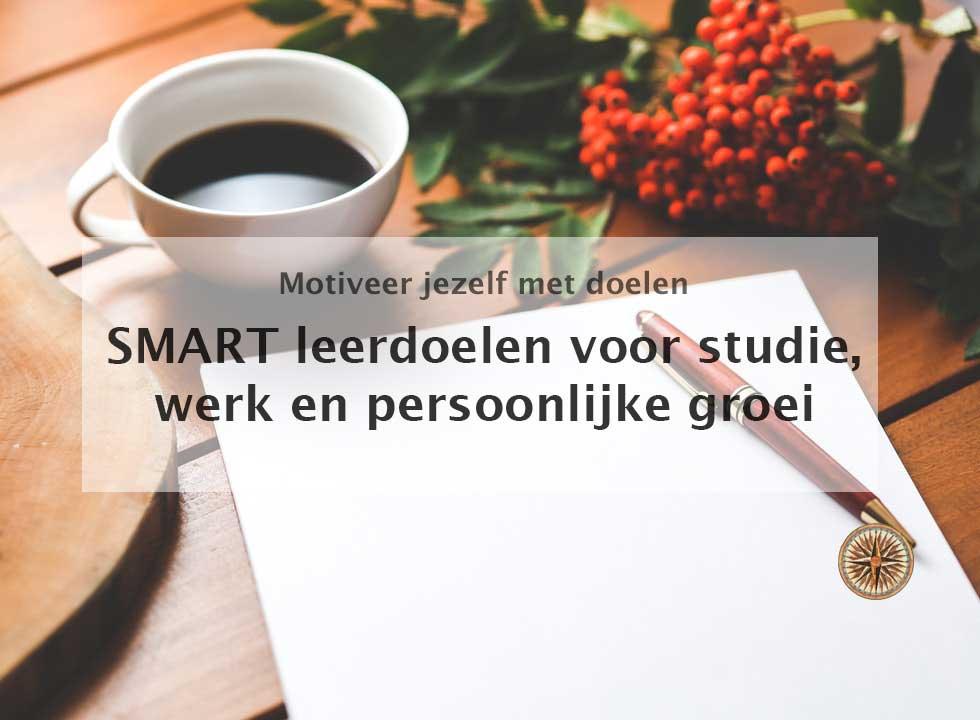 SMART leerdoelen voorbeelden hbo studie werk en persoonlijke groei zorg doelen stellen SMART uitwerking